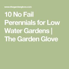 10 No Fail Perennials for Low Water Gardens | The Garden Glove