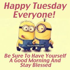 6 Funny and Inspirational quotes - Page 5 of 6 - Minion Quotes Cute Minions, Funny Minion Memes, Minions Quotes, Stupid Funny Memes, You Funny, Minion Sayings, Hilarious, Funny Humor, Good Morning Happy Thursday