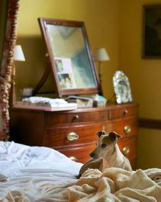 Furlow Gatewood bedroom