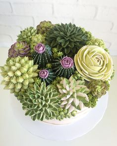 Buttercream frosting cake art by Leslie Vigil Cupcakes Bonitos, Cupcakes Decorados, Pretty Cakes, Beautiful Cakes, Amazing Cakes, Dessert Party, Cupcakes Succulents, Cactus Cake, Plain Cake