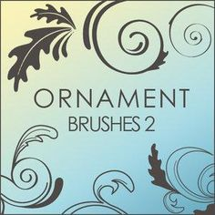 A very cool tribal/swirly curly onrnamental brush set with large brushes.    This brushset was created by Jan Willem Geertsma and is compatible with CS versions of Adobe Photoshop. It is free for personal and non-comercial use only.