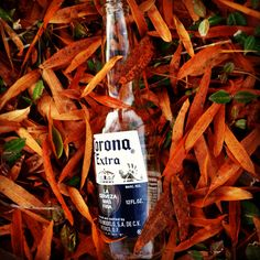 Corona and autumn - Perfect