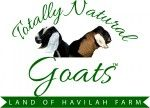 Land of Havilah Farm - naturally raised Nubian Dairy Goats in south central Michigan - herbals