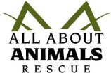 Who is All About Animals Rescue?  All About Animals is a no-kill rescue that works with dogs and cats in Maricopa County and beyond.  All About Animals Rescue is dedicated to saving companion animals whose lives are in jeopardy by providing rescue, foster and adoption services.  The majority of our animals are from the local euthanasia lists as we recognize that these animals are in the most dire condition.