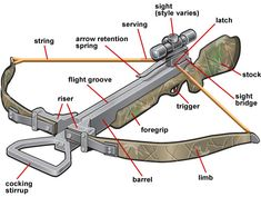 Why is it better to read crossbow review before buying one? Check out more http://www.bestcrossbowsreviews.org/