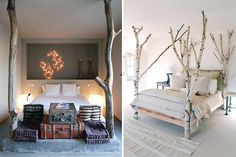Bedrooms With Tree Concept
