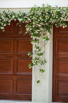 Monrovia's Star Jasmine details and information. Learn more about Monrovia plants and best practices for best possible plant performance. Evergreen Groundcover, Evergreen Vines, Star Jasmine Vine, Jasmine Jasmine, Jasmine Tree, Garage Trellis, Climber Plants, Vine Trellis, Backyard Landscape Design