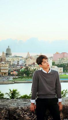 Handsome Korean Actors, Handsome Boys, Most Beautiful Faces, Beautiful Men, Korean Celebrities, Celebs, Park Bo Gum Wallpaper, Park Go Bum, Song Joong