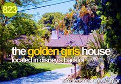 Which backlot? WDW? Gotta see this, love Golden Girls!