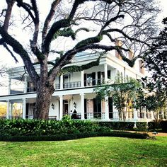 Brandon Hall Plantation, a stunning #wedding venue. #Natchez