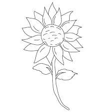 Image result for imagine of a sunflower for drawing