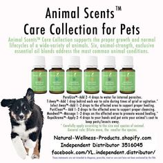 Animal scents collection for pets is AMAZING! Essential Oils For Colds, Essential Oil Uses, Young Living Essential Oils, Young Living Pets, Oils For Life, Oils For Dogs, Yl Oils, Living Oils, Healing Oils