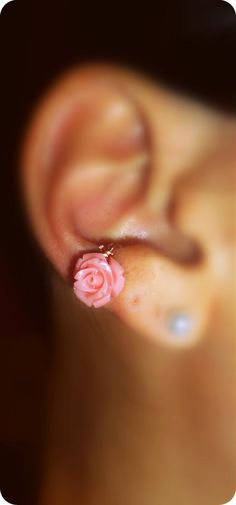 I must have this! Im sure my family knows why i love pink roses and this is so pretty!