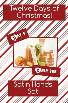 On the 9th Day of Christmas, my Mary Kay Consultant gave to me. www.marykay.com/orhile