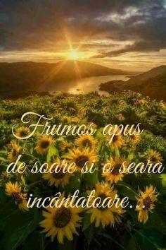Dragi prieteni , vă doresc.... un frumos apus de soare ...... - Sofian Elena - Google+ Mountains, Nature, Photography, Travel, Health, Google, Naturaleza, Photograph, Viajes