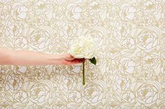 Pinning ChasingPaper so I remember where to buy some awesome removable wallpaper :)