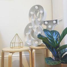 Brass Himmeli sculpture - Hexagon Pyramid 1   indoor planter   air plant holder   geometric prism   modern minimalist   Scandinavian design