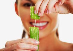 Lá nha đam được coi là nguyên liệu thiên nhiên trị nám đơn giản và hiệu quả nhất
