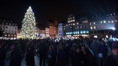 L'illumination de l'immense sapin de Noël, place Kléber, a marqué le coup d'envoi du célèbre marché qui se tiendra jusqu'au 31 décembre.