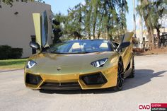 Looking awesome, car done by CWD www.cwdwrap.com Call for appointment 786-558-4848 ‪#‎cwdwrap‬ ‪#‎cars‬ ‪#‎lamborghini‬ ‪#‎aventador‬ ‪#‎aventadorgold‬ ‪#‎miami‬#luxury ‪#‎luxurylifestyle‬ ‪#‎cwd‬ ‪#‎carwrapmiami‬ ‪#‎gold‬ ‪#‎avery‬ ‪#‎chrome‬ ‪#‎chromewrap‬