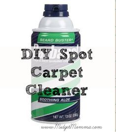 Spot cleaner.  For one day when I have carpet I care about.