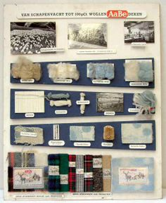 Demonstratieplaat 'Van Schapenvacht tot 100 pCt Wollen AaBe deken', waarop d.m.v. foto's, wol, halffabrikaten en staaltjes het proces van sc...