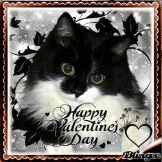 Happy Valentines Day Happy Valentines Day Pictures, Animation, Scrapbook, Gifts, Art, Art Background, Presents, Kunst, Animation Movies