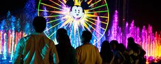 WOC Dining Package Guests stand in a preferred viewing area and watch the World of Color show