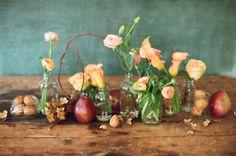 Introducing: Flower Sessions w/ @mizmaggieb