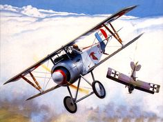 Nieuport 17 flown by French ace George Guynemer