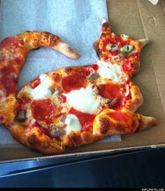 Pizza cat: unexpected!