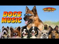Alberto Lipari DOGS MUSIC (Original Song)
