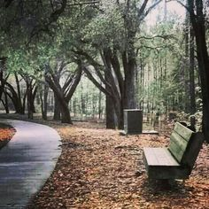 A lovely afternoon stroll in Columbia, SC Sesquicentennial State Park South Carolina, State Parks, Places Ive Been, Columbia, Photo Ideas, Wonderland, Beautiful Places, Faces, College