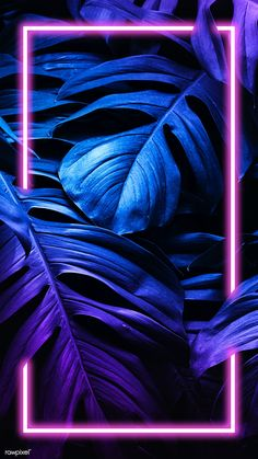 Download premium psd / image of Monstera leaf mobile screen wallpaper by Jubjang about Tropical neon, tropical neon lights phone screen wallpaper, neon, iPhone background dark, and neon leaves 1219981
