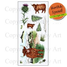 'Highland Cattle' Clear set contains 12 stamps. Overall size of set - x approx. All our clear stamps are made with photopolymer resin. The Monthly Special includes a free Project sheet with step by step instructions on how to make 2 cards. Highland Cattle, Scottish Tartans, Farm Animals, Wild Animals, Coupon Design, Clear Stamps, Resin, Discount Toms, A4