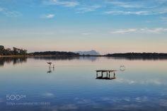 Life at the lake. by iobitridolo #nature #mothernature #travel #traveling #vacation #visiting #trip #holiday #tourism #tourist #photooftheday #amazing #picoftheday