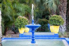 Marrakech - The Garden Majorelle [February, 2011]