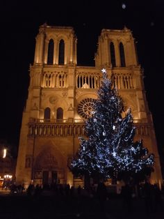 Notre Dame Cathedral at Christmastime - Paris, France - 2011 - photo by E. Muehr