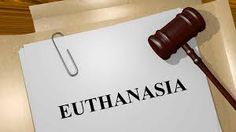 Image result for euthanasia patients rights