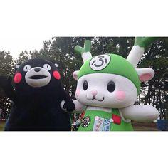 #くまモン #Kumamon #ふっかちゃん #Fukkachan ゆるキャラグランプリ2015in 出世の街 by kuma.nassyi
