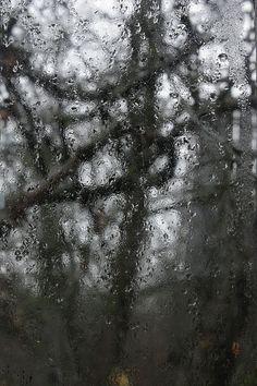 Autumn rain by Margarita Buslaeva a rainy autumn day outside the window #MargaritaBuslaevaFineArtPoto #Photography #AutumnRain #FineArtPrints