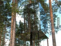 The Invisible Treehouse. This architect deserves lots of medals!