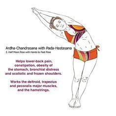 bikram yoga postures illustrated with real bodies | Bikram ...