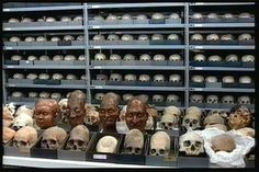 The Room of 10000 Ancient Skulls in Lima Peru