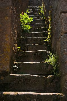 Stone Stairs, Noyers-sur-Serein - France Stairs And Staircase, Stone Stairs, Beautiful Stairs, Beautiful Places, How To Draw Stairs, Roads And Streets, Bamboo Architecture, Exterior Stairs, Belle Villa