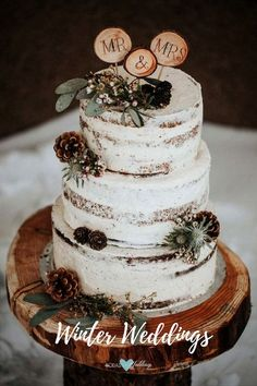 Semi-naked cake with wooden details and pinecones.