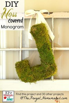 DIY moss covered monogram (day 16 of 31 days of Pinterest)
