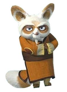 Kung Fu Panda The Secret Of Nimh, Master Shifu, Mandarin Lessons, Woody Woodpecker, Panda Party, Kung Fu Panda, Cartoon Characters, Fictional Characters, Animal Design