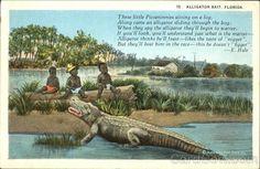 gator postcard - Google Search