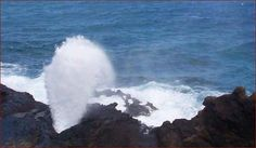 DONE! (Saw the blowhole on Oahu) (2011)